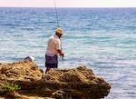 top fishing Cronulla