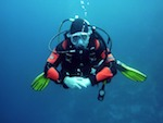 things to do in Cronulla, scuba diving