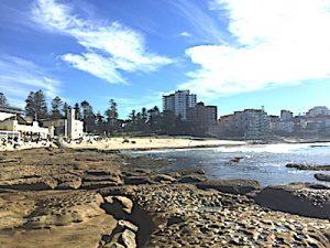Cronulla beach from the rocks