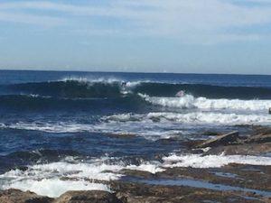 Shark Island surfing