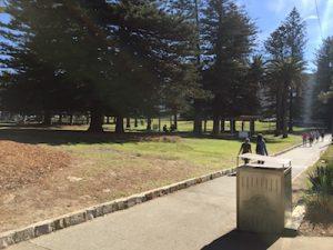 relaxing walks along Cronulla's Esplanade