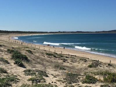 lookout at Wanda Beach Cronulla