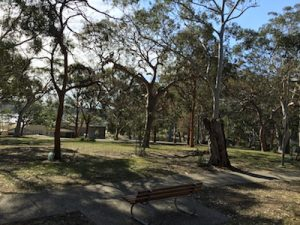 shady picnic areas Crounlla