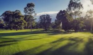 play golf in Cronulla Woolooware Golf Course