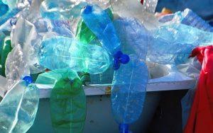 recycling bins in Cronulla