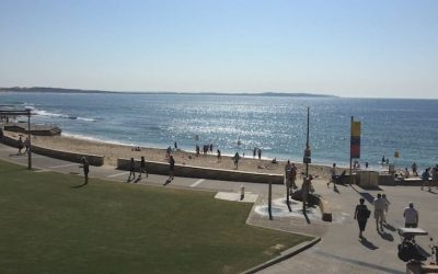 See Cronulla Park's new look out!
