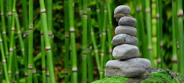 covid wellbeing for your business